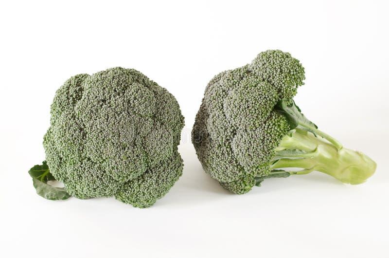 De groene broccoli liggen op een witte achtergrond stock afbeelding