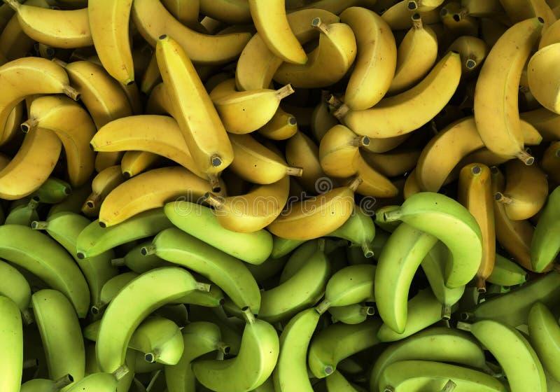 De groene en gele 3d Bananenachtergrond geeft illustratie terug royalty-vrije illustratie