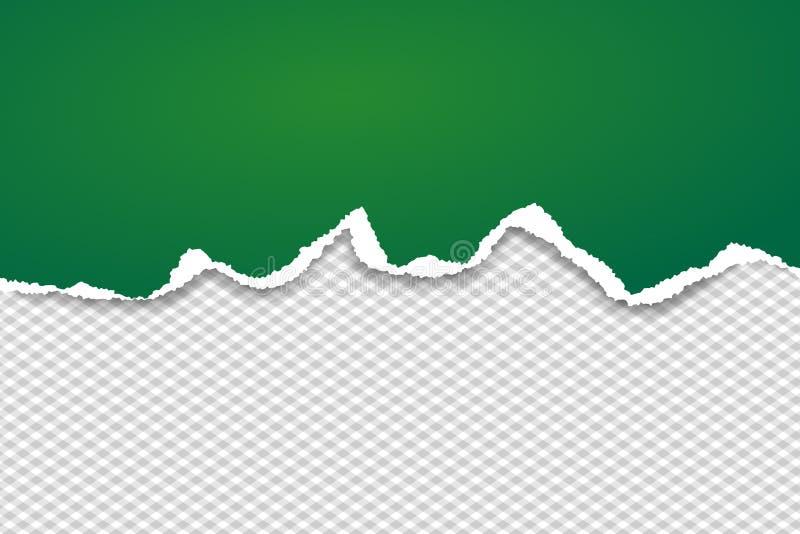 De groene gescheurde horizontale document strook voor tekst of het bericht is op geregelde achtergrond Vector illustratie vector illustratie