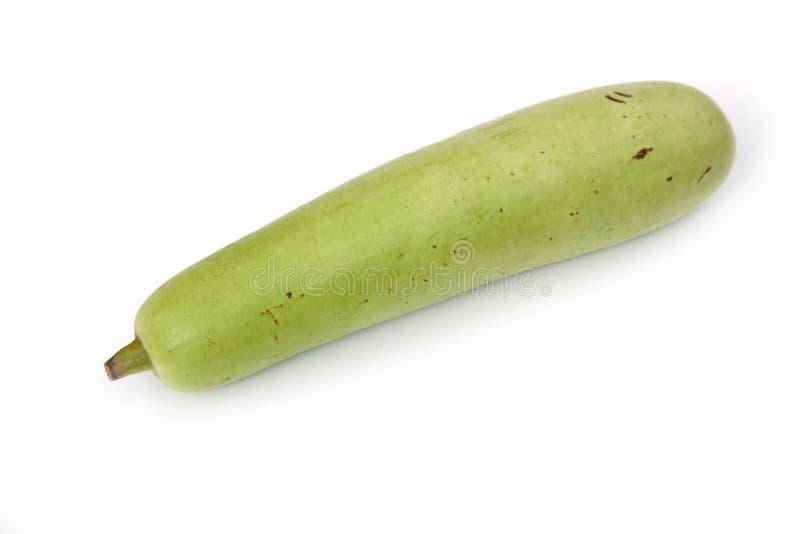 De groene groente van de Kalebasboom stock afbeelding