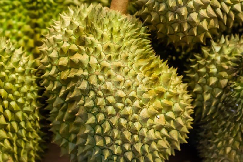 De groene grote spiked stinkend seizoengebonden markt de marktthailand van het fruitclose-up van sterk stock afbeelding