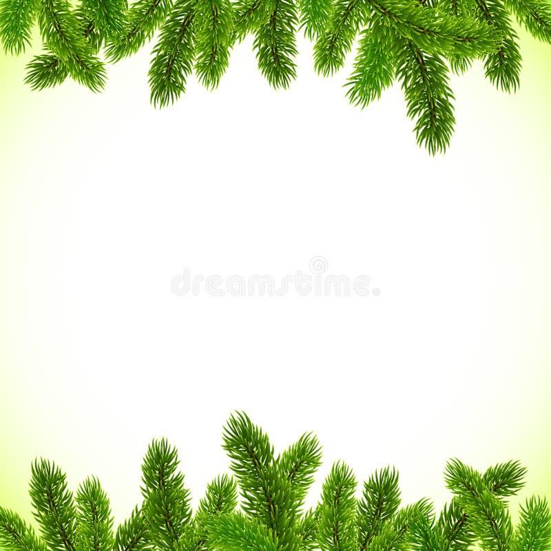 De groene Kerstboom vertakt zich vectorkader stock illustratie