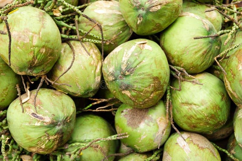 De groene kokosnotenvruchten op een Thaise voedselmarkt sluiten omhoog stock foto