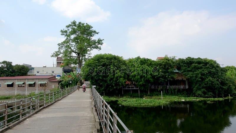 De groene rivier en de oude brug stock foto