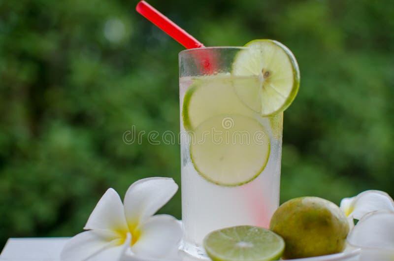 De groene thee van het ijs stock foto
