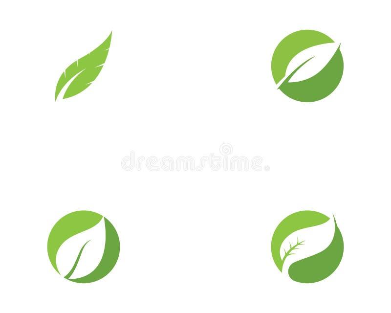 De groene vector van het de aardelement van de bladecologie vector illustratie