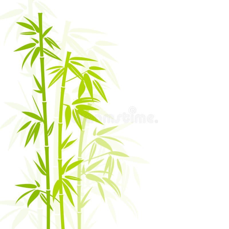 De groene Verticaal van de Bamboeinstallatie in Vierkante Schaduw Als achtergrond vector illustratie