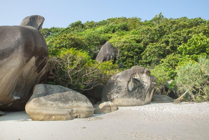 De groene wildernis van Paradise en grote stenen keerkringen Zandkust, rotsen en vele installaties stock foto's