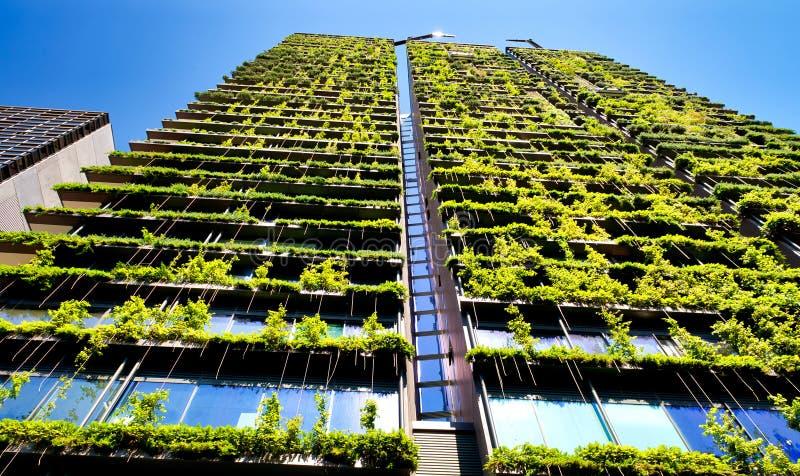 De groene wolkenkrabberbouw met installaties die op de voorgevel tegen blauwe hemel groeien Ecologie en het groene leven in stad, stock afbeelding