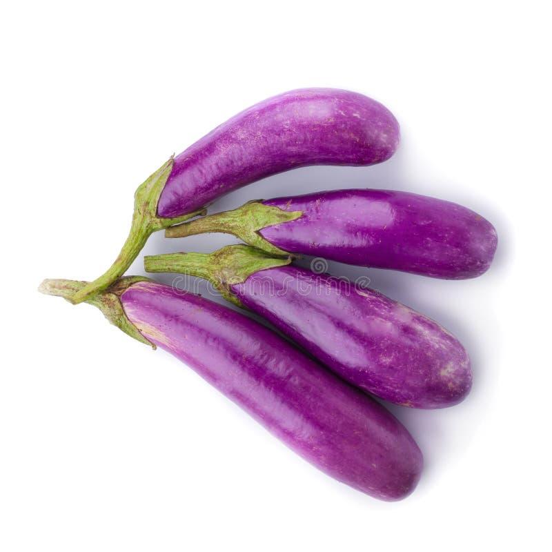 De groente van de aubergine of van de aubergine op witte achtergrond royalty-vrije stock foto
