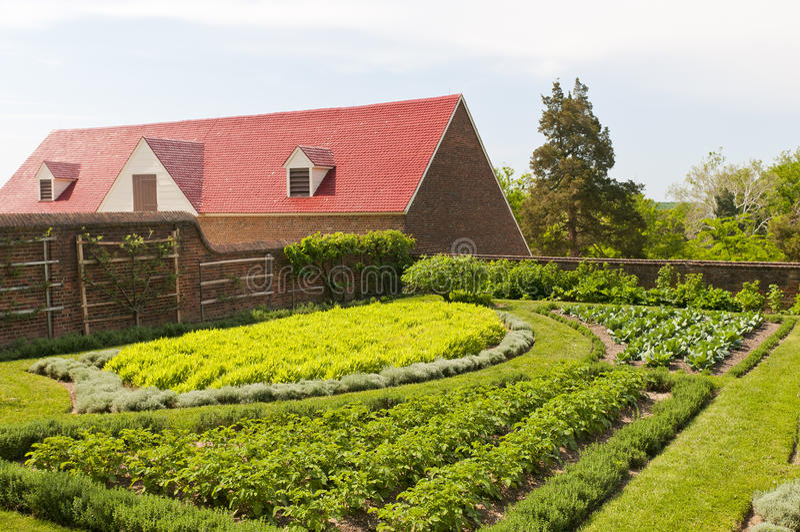 De groente van het kruid en fruittuin royalty-vrije stock afbeelding