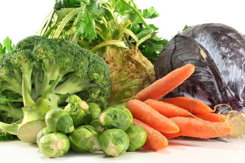 De groenten van de winter royalty-vrije stock afbeeldingen