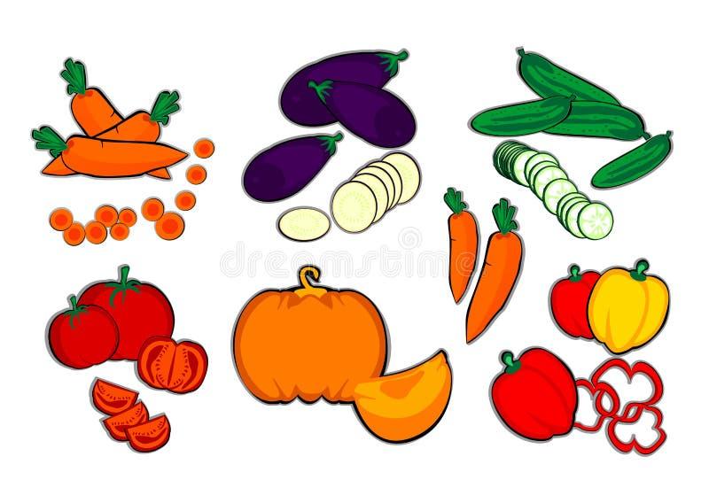 De groenten, wortel, aubergine, komkommer, tomaat, pompoen, paprika, de herfst, de oogst, landbouwbedrijf, kleurden, vector, nieu royalty-vrije illustratie
