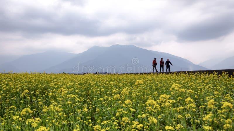 De groep lokale reizigers geniet van een langzame afgemeten vrije tijdsgang rond het mooie gebied stock fotografie