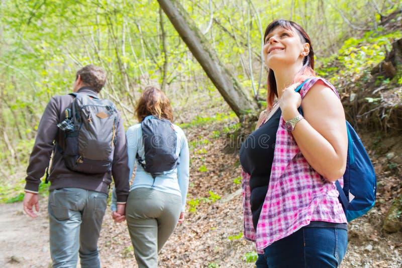 De groep vrienden wandelt in het bos royalty-vrije stock afbeelding
