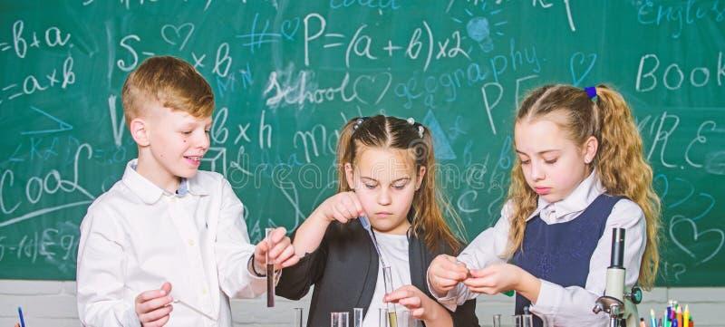 De groepsscholieren bestuderen chemische vloeistoffen Schoollaboratorium Meisjes en jongensgedragsexperiment met vloeistoffen gro stock afbeeldingen