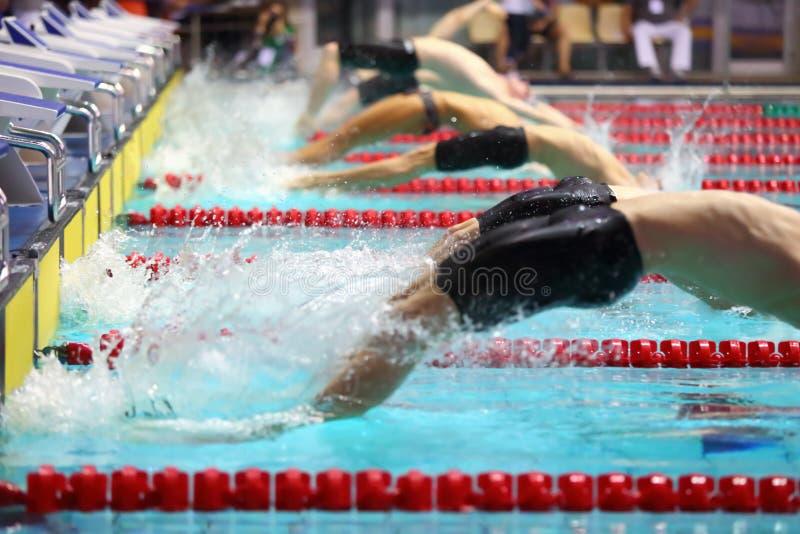 De groepszwemmers duiken terug in het water stock fotografie