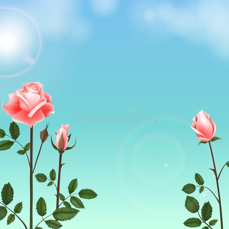 De groetkaart met rozen kan als uitnodigingskaart voor huwelijk, verjaardag en andere vakantie en de zomerachtergrond worden gebr royalty-vrije illustratie