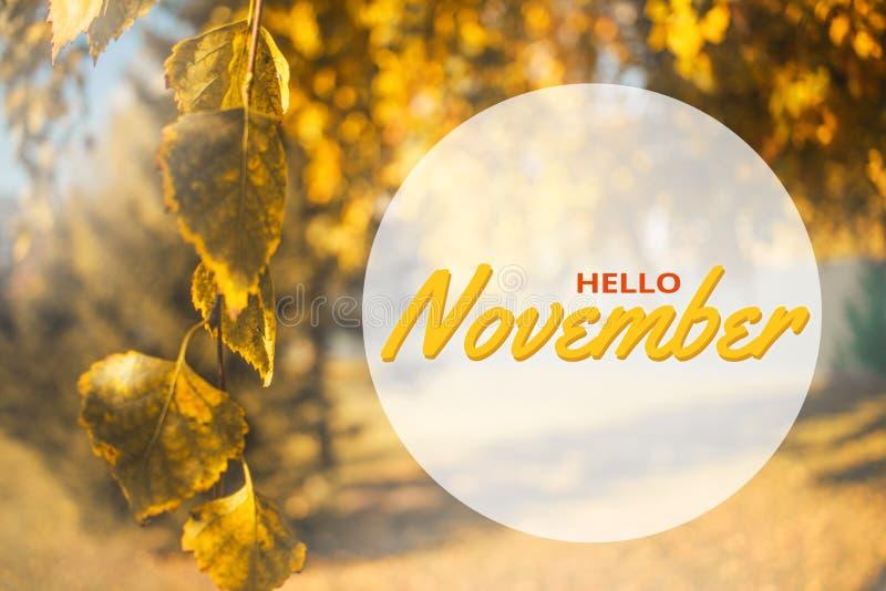De groetkaart van Hello November Het concept van de herfst Geïsoleerd Samenstelling in park Het gele landschap van de bladerenboo stock foto's