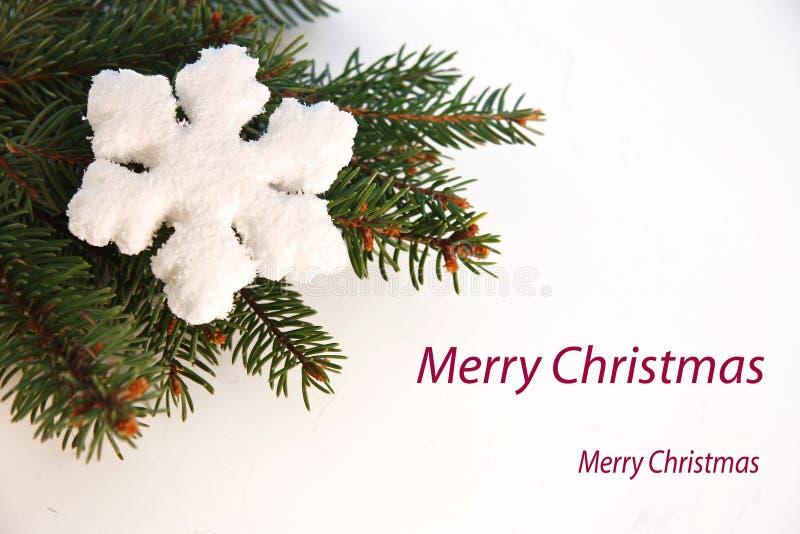 De groetkaart van Kerstmis met vlok