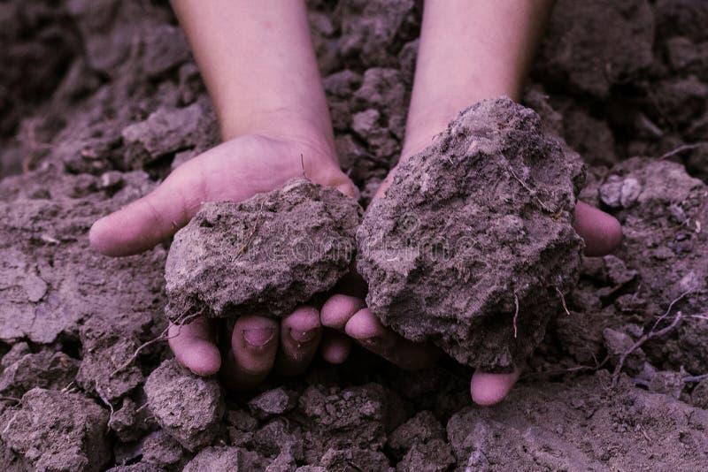 De grond in jonge geitjes overhandigt, gecultiveerd vuil, aarde, grond, bruin land B royalty-vrije stock afbeeldingen
