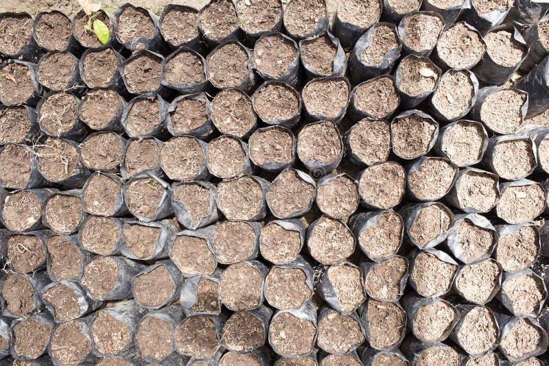 de grondzak voor het planten van de zaailingen daarin is een leemachtige grond stock fotografie