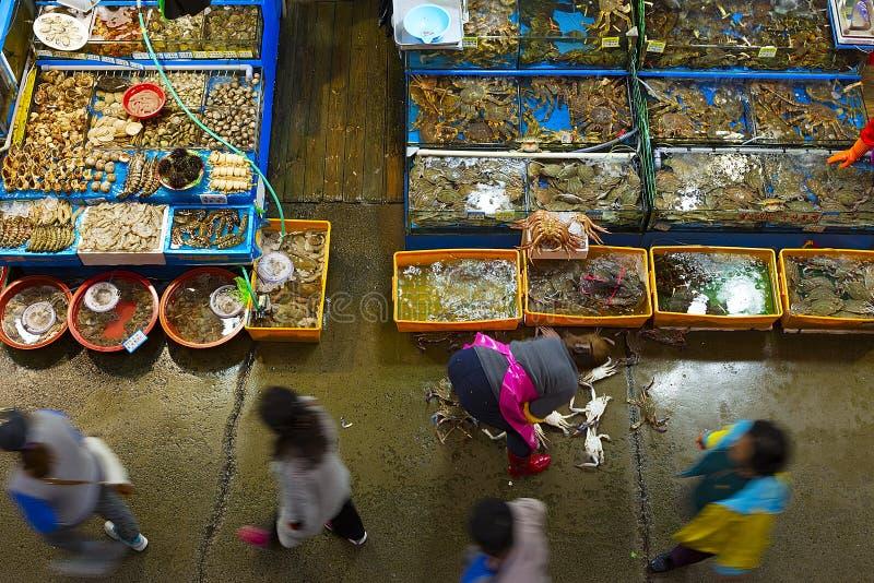 De Groothandelsmarktbinnenland van de Noryangjinvisserij royalty-vrije stock foto