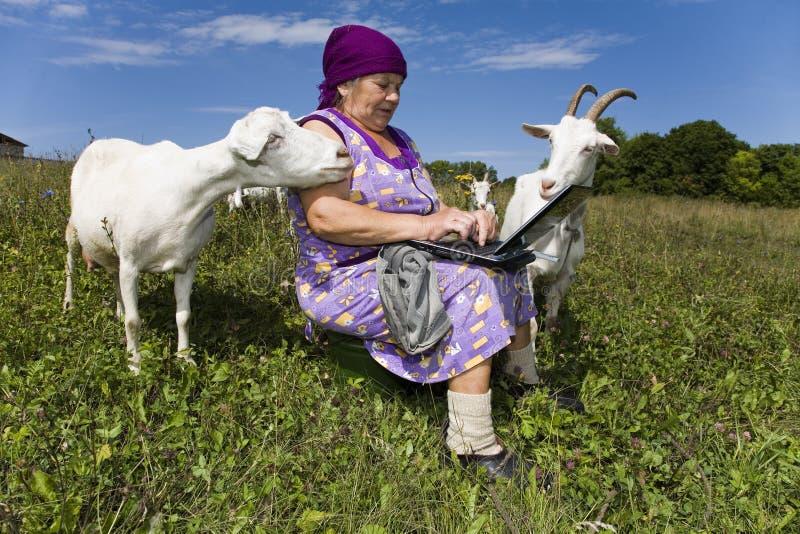 De grootmoeder schrijft de elektronische brief aan Th royalty-vrije stock afbeeldingen
