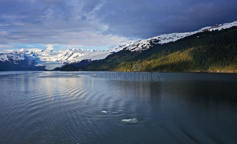 De grootsheid van Alaska royalty-vrije stock afbeeldingen