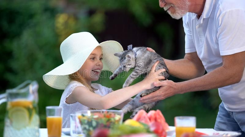 De grootvader die kat voorstellen aan gelukkig meisje in hoed, verrast heden, anticiperen royalty-vrije stock foto