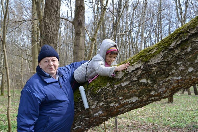 De grootvader en de kleindochter lopen in het de lentebos stock foto