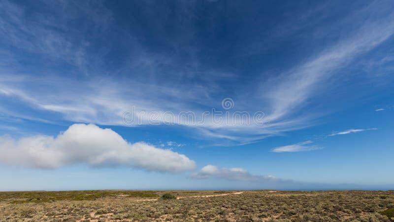 De Grote Australische Bocht op de Rand van de Nullarbor-Vlakte stock foto's