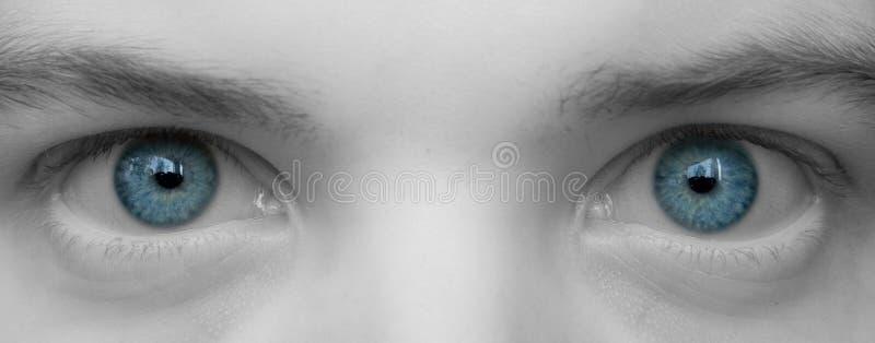 De grote blauwe ogen sluiten omhoog stock fotografie