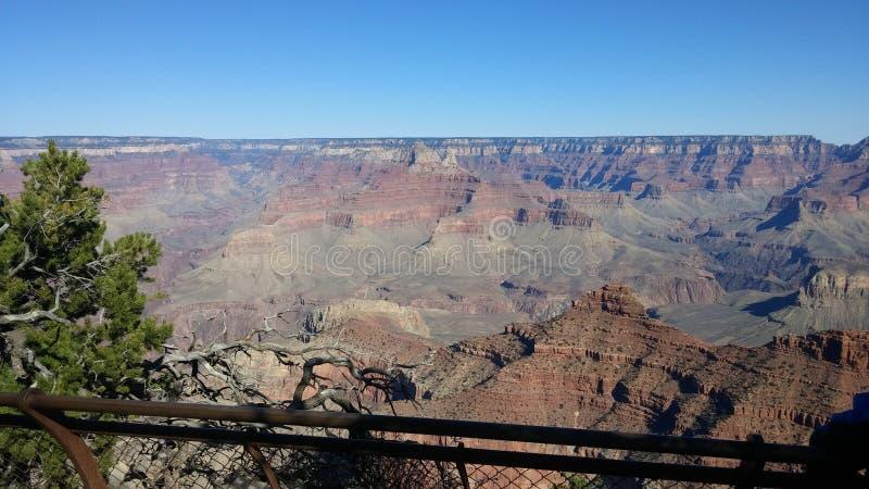 De grote canion is een mooie scène stock fotografie