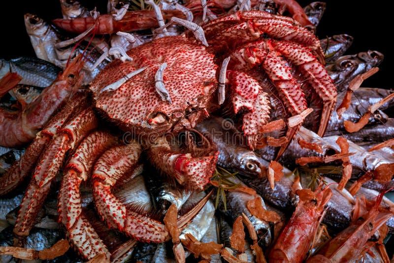 De grote harige gekookte krab zit op een hoop van droge gezouten vissen op een giftboeket op de zwarte achtergrond Gestemd beeld royalty-vrije stock afbeeldingen