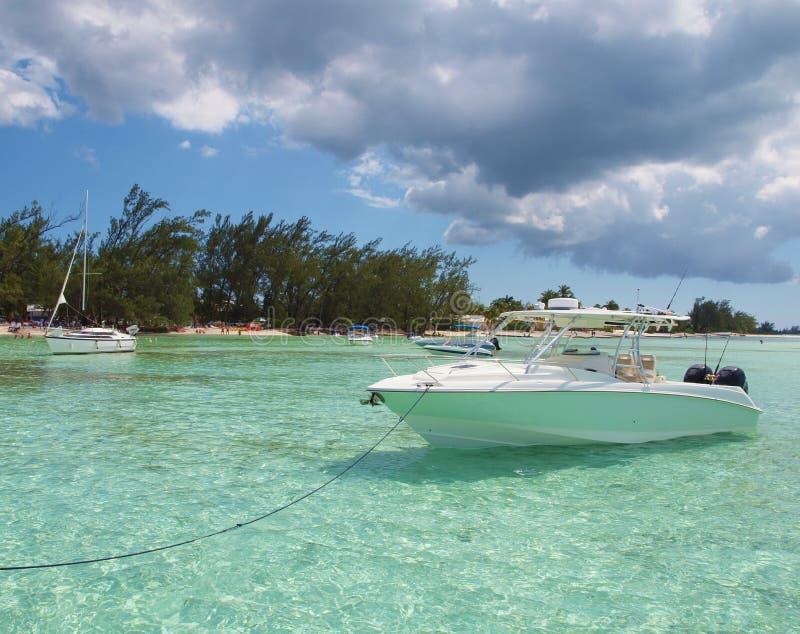De Grote Kaaiman Caymaneilanden van het Punt van de rum royalty-vrije stock fotografie