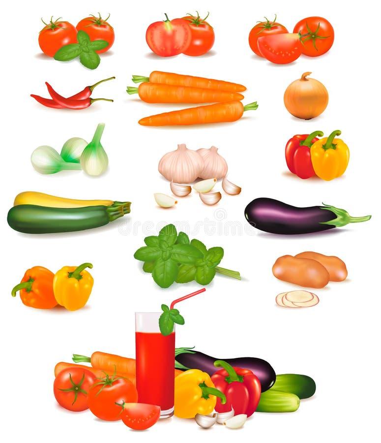 De grote kleurrijke groep groenten. stock illustratie