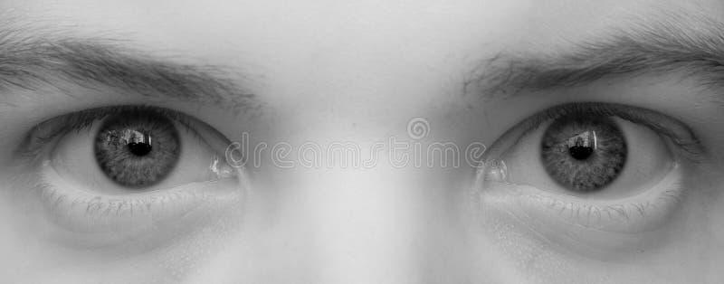De grote ogen sluiten omhoog stock afbeelding