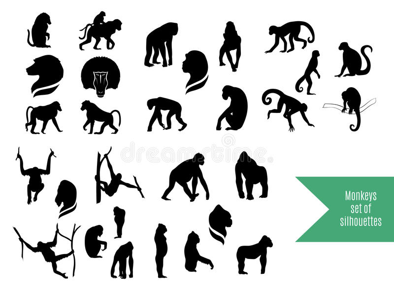 De grote reeks wilde apensilhouetten vector illustratie