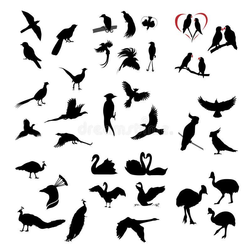 De grote reeks wilde vogelssilhouetten vector illustratie