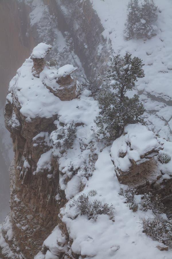 De grote Sneeuw van de Canion royalty-vrije stock foto