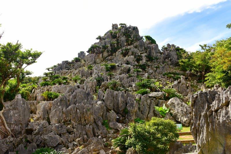 De grote vormingen van de kalksteenrots in Daisekirinzan parkin Okinawa stock afbeeldingen
