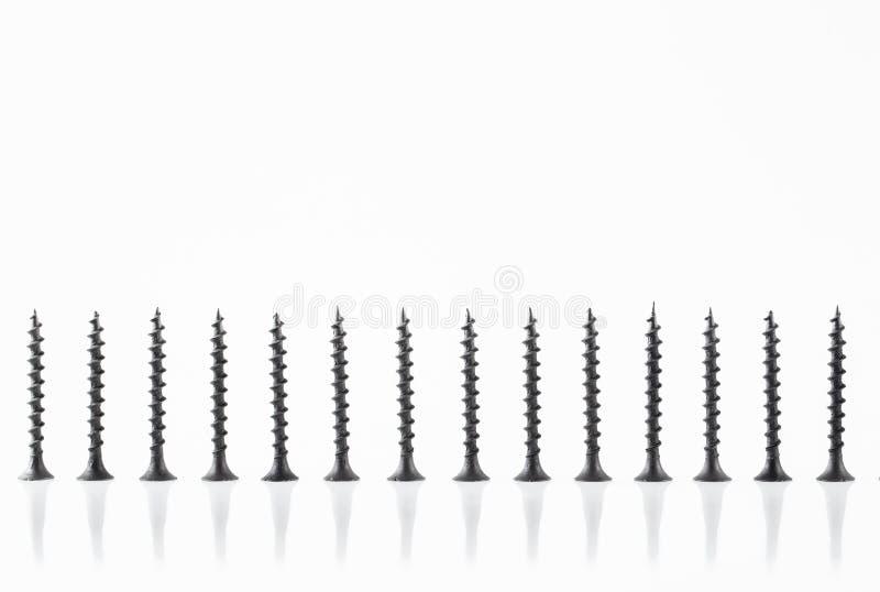 De grote zelf onttrekkende schroeven van het schroevenstilleven op witte achtergrond stock afbeeldingen