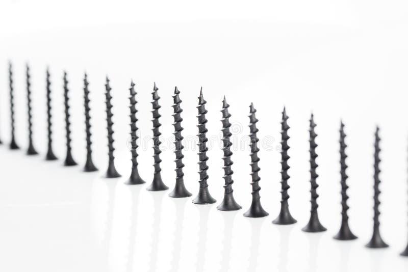 De grote zelf onttrekkende schroeven van het schroevenstilleven op witte achtergrond stock foto