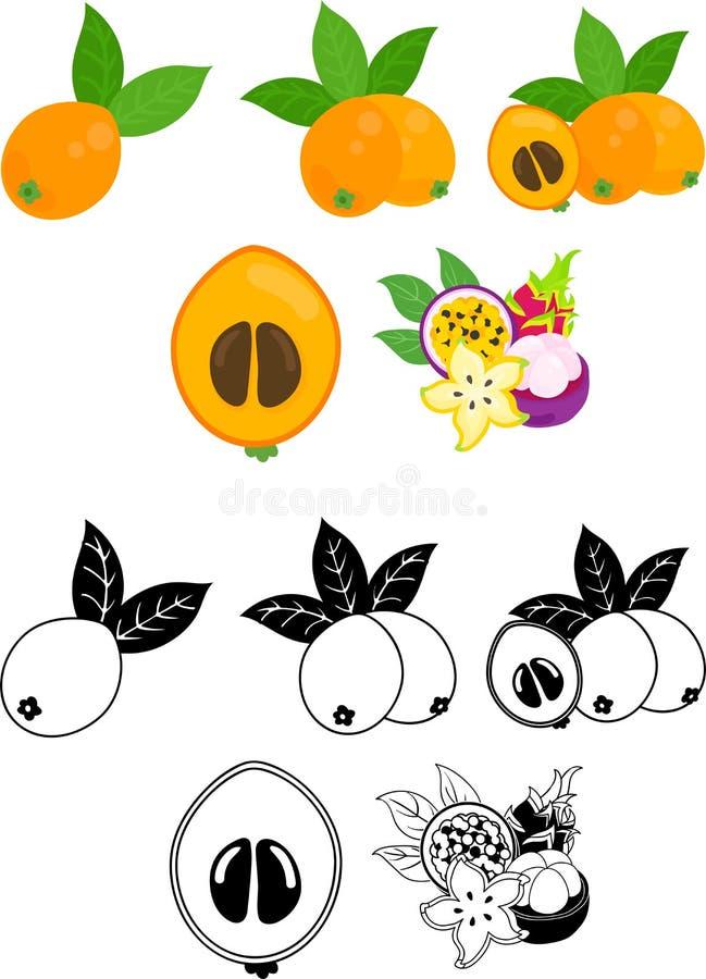 De gulliga symbolerna av frukter vektor illustrationer