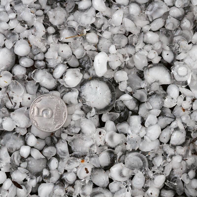 De hagelstenen ter plaatse na hagelbui, hagel van grote grootte, begroeten met maat met een groter muntstuk royalty-vrije stock foto