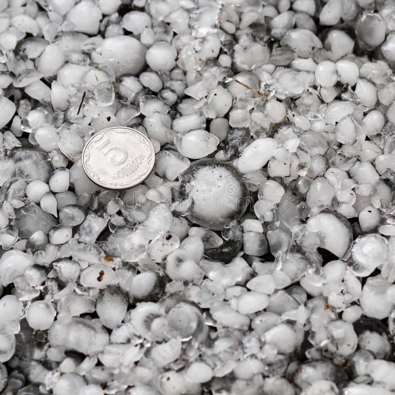 De hagelstenen ter plaatse na hagelbui, hagel van grote grootte, begroeten met maat met een groter muntstuk stock foto's