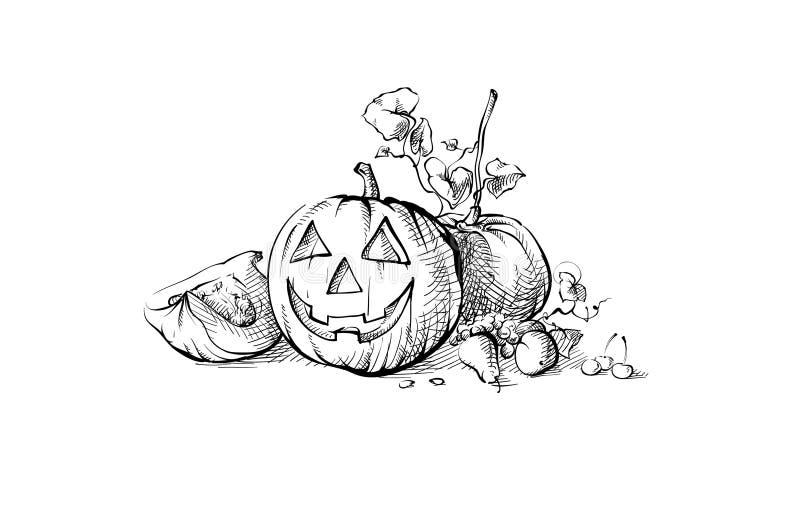 De Halloween do símbolo da abóbora vida ainda ilustração stock