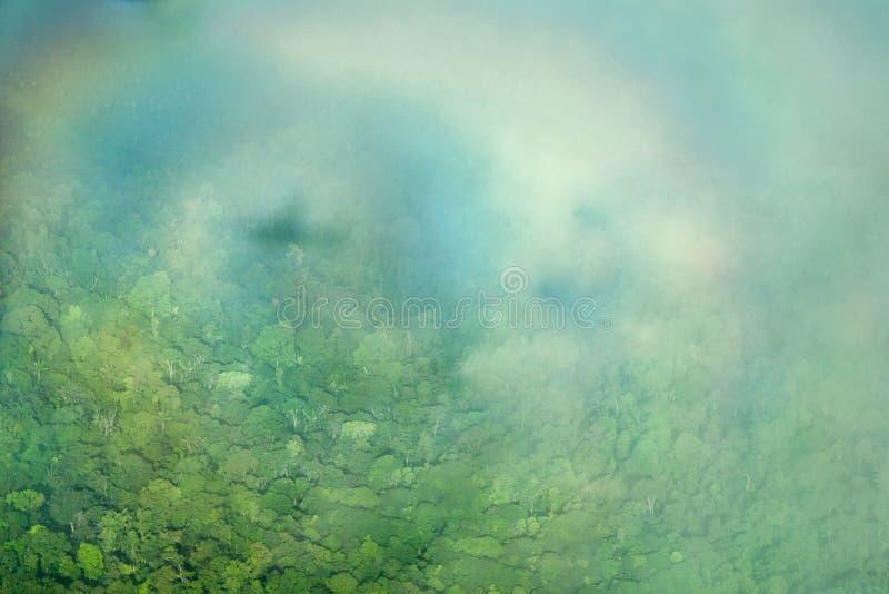 De halo van de schaduw van het vliegtuig over de wildernis, uit het vliegtuig wordt genomen dat stock fotografie