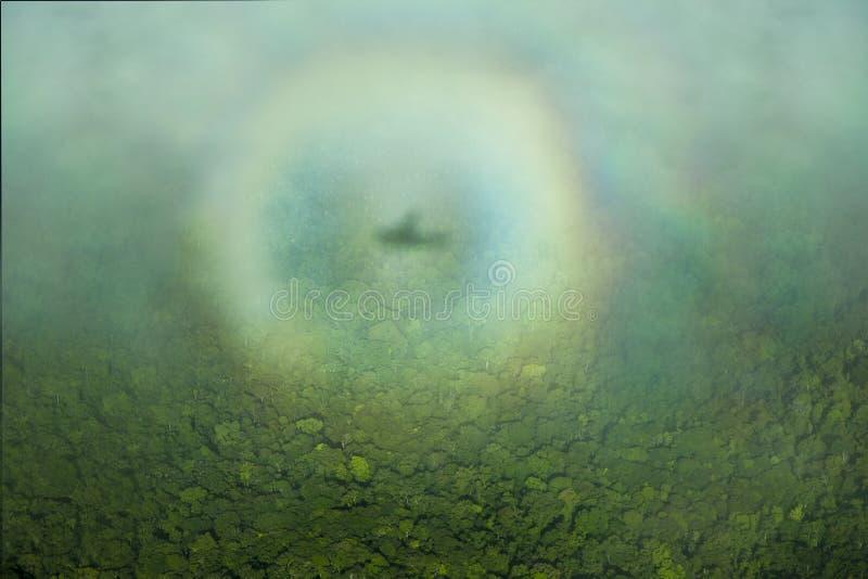 De halo van de schaduw van het vliegtuig over de wildernis, uit het vliegtuig wordt genomen dat stock foto's